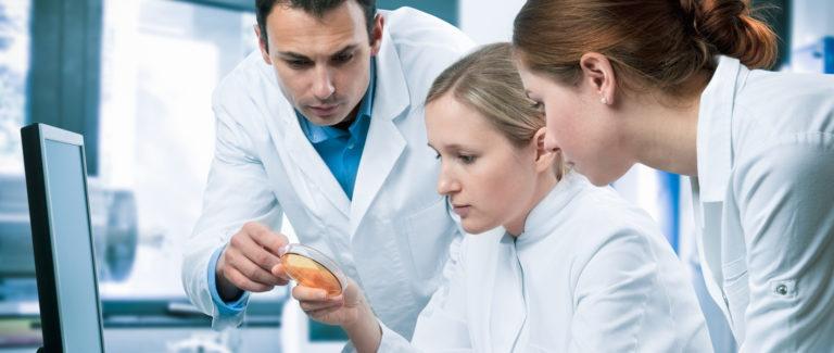 Junge Studierende bei ihrer Forschungsarbeit im Labor